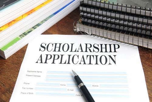 ICSI Merit-cum-Means Assistance Application Form